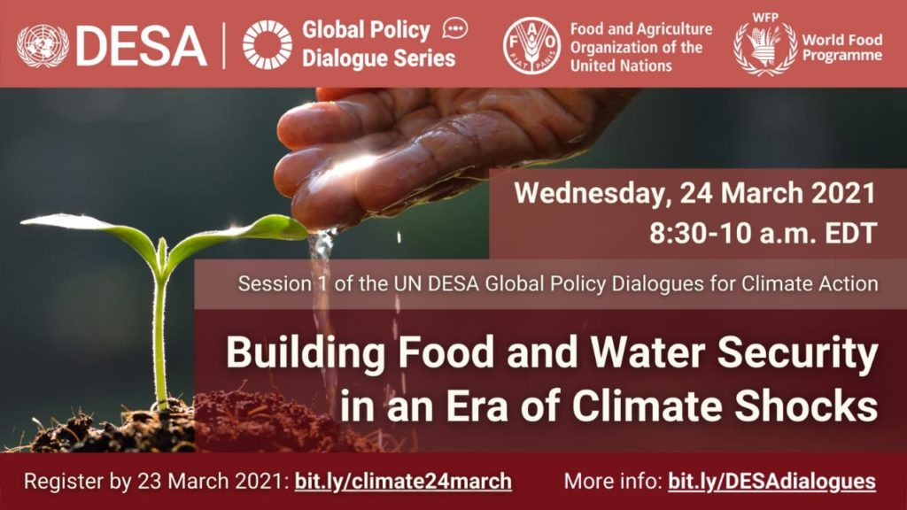 Global policy dialogue series